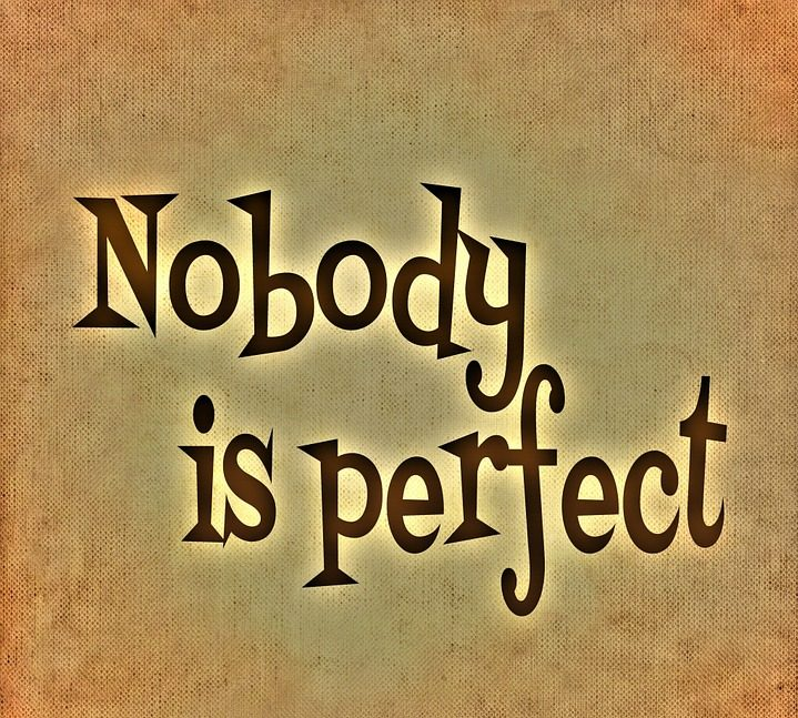 statusbild-nobody-perfect